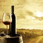 O lado natural dos vinhos
