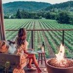 Viagens de Vinhos no Novo Mundo