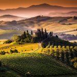 Tudo que precisa saber sobre o Brunello di Montalcino (Parte 3 de 3)