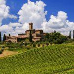 Tudo que precisa saber sobre o Brunello di Montalcino (Parte 2 de 3)