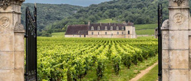Três fatos que você não sabia sobre a Borgonha