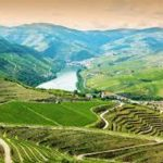 Os vinhos generosos de Portugal
