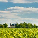 Guia Definitivo de Bordeaux – parte II: sub-regiões