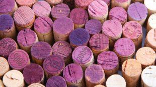 Servindo vinhos: paixão à segunda vista?