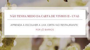 Não tenha medo da carta de vinhos 2 – Uvas