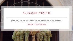 Corvina, Molinara e Rondinella: As uvas do vêneto