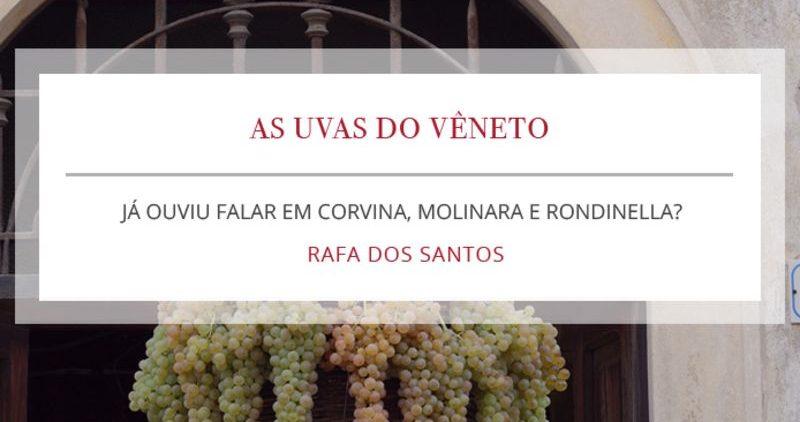 Corvina, Molinara e Rondinella: As uvas do vêneto