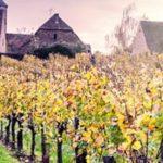 Alsácia: O Reino Das Castas Brancas