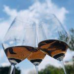 TOP 5 Vinhos: Primavera 2019