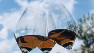 top 5 vinhos para curtir a primavera 2