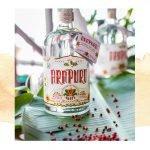 3 drinks de inverno com Arapuru Gin para você se deliciar